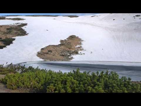 Carpathian mountains Ukraine Marmoros'kyi masyv May