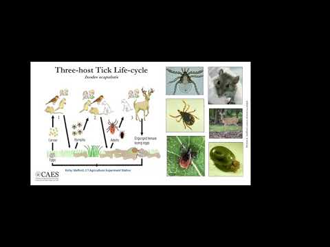 Tick IPM #1: Strategies and Barriers to the Prevention of Tick-Borne Disease
