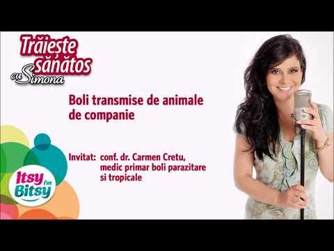 Boli transmise de animale de companie