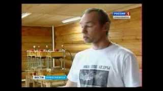 nsktv.ru Сергей Мегре Продукция ЗКР megre.ru , megrellc.com/contacts
