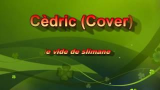 Slimane le vide (cover)