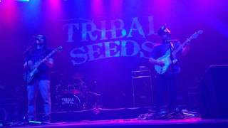 Tribal Seeds Winter Roots Tour - Boston House of Blues 2/23/17  - Love Psalm