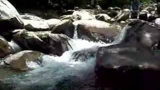 Moment of Zen: Mountain Stream
