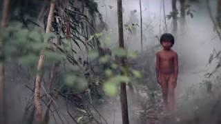 """""""Cachoeira"""" curta de Sérgio Andrade"""