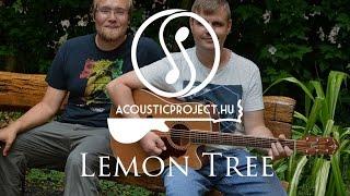 Lemon Tree - Fool's Garden Acoustic Cover