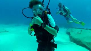 UNEXPECTED SHARK ENCOUNTER in Bahamas while Scuba Diving with Kids