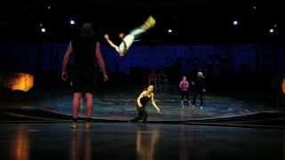 Cirque du Soleil | Alegría