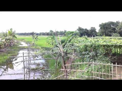 Bangla trip