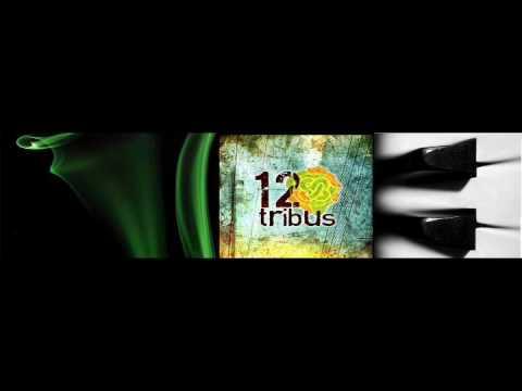 Mi Alma Es La Tela de 12 Tribus Letra y Video