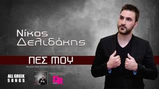 Νίκος Δελιδάκης  | Πες Μου | Official Audio Release 2017