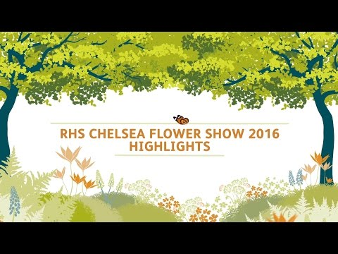 RHS Chelsea Flower Show 2016 Highlights