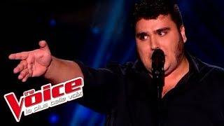 The Voice 2015│Yoann Launay - Ces gens là (Jacques Brel)│Blind audition