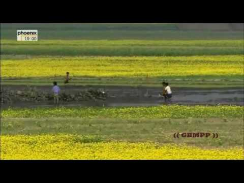 Wonderful Chill Out Of Bangladesh – The Land Of Beauty (Part 2)