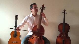 Little things - One Direction (Viola da Gamba cover)