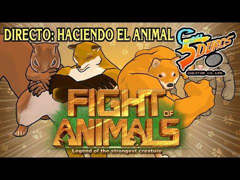 DIRECTO: FIGHT OF ANIMALS (INTENTOS DE 1cc HACIENDO EL ANIMAL)