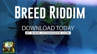 2018 Dancehall Instrumental Alkaline Vybez Kartel Type beat Breed Riddim