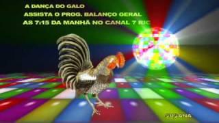 DANÇA DO GALO