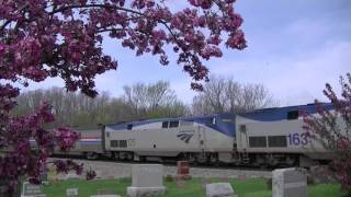 Cherry Blossoms and California Zephyr at Agency, Iowa