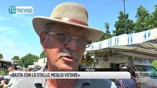 TG TREVISO (08/05/2018) - «BASTA CON LO STALLO, MEGLIO VOTARE»