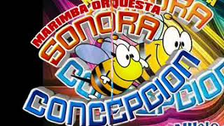 Despacito - Marimba Orquesta Sonora Concepción