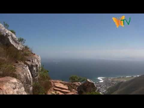 Cape Town Part 3 – Lion's Head Mountain Hike – South Africa World Cup 2010 Eco Route