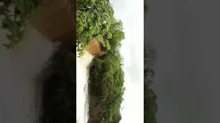 Fortes chuvas em Tenente Ananias, no interior do RN