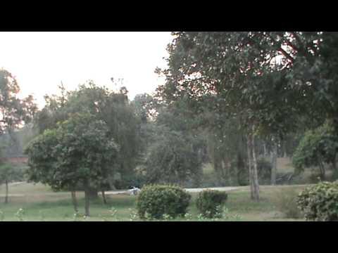 Sopaka Bhantejyu Lumbini Nepal to India Travel dec2010 47