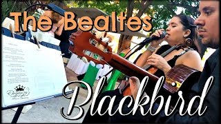 The Beatles - Blackbird - LIVE | Elegaza Music | Cover
