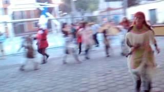 Danza JAguares