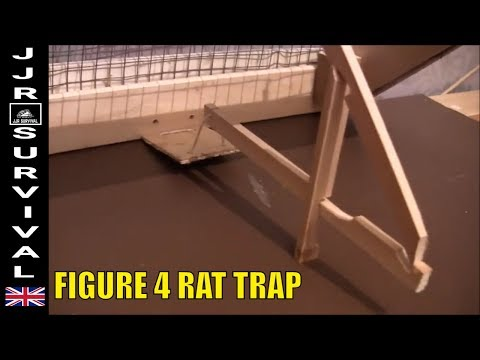 Figure 4 Rat Trap