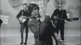 Herman's Hermits    Can't You Hear My Heartbeat Live Hulabaloo 1965