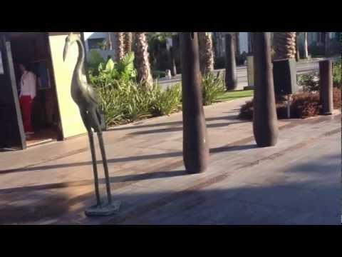 Riu Palace Tikida Agadir – Pool Tour Early Morning