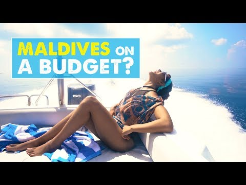 MALDIVES ON A BUDGET! Also…THE CORAL REEFS ARE DEAD ☹ | Newlywed Diaries Vlog 02