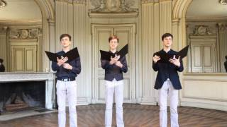 Gud Nuse - The Bad Touch  [Classical a capella choir in Castle | Blood Hound Gang]