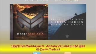 DBSTF Vs Martin Garrix - Afreaka Vs Lions In The Wild (X-Darek Mashup)