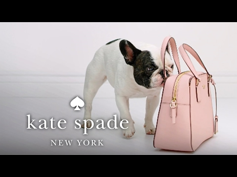 "stick with me, babe: part 3 ""wipes clean"" 