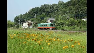 EJP071196 Japan auto motor coach Mooka railway line Mashiko 真岡鐵道列車益子 Triebwagen tren 디젤동차 마시코 모카 철도