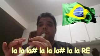 Flauta Doce Hino Nacional  Notas para Iniciantes