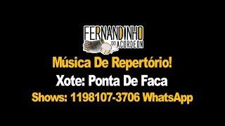 Repertório Xote - Ponta de faca - Fernandinho Do Acordeon