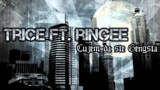Trice Ft Ringee - Cujem da ste gengsta (cover Kat Dahlia)