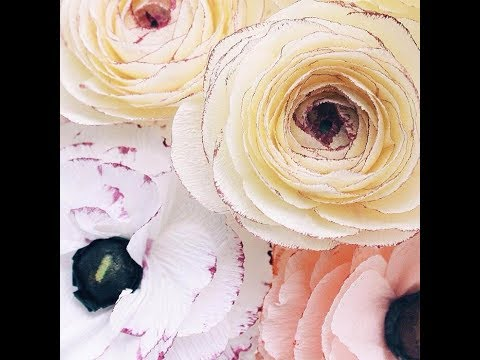 Download Thumbnail For How To Make Round Tissue Paper Flower Diy