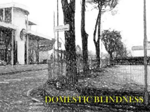 domestic-blindness-autogrill-acoustic-iltopone93