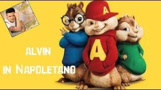 Alvin Superstar Neomelodico (DA VEDERE TUTTO)