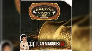 Comitiva Brutos da Cana (Humaitá-AM) - Dj Luan Marques