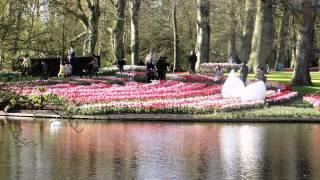 HOLANDIA - KEUKENHOF - BAJKOWY OGRÓD ; (W. Kocoń - Wyznania najcichsze...)