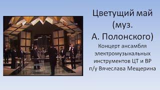 Цветущий май Оркестр электромузыкальных инструментов