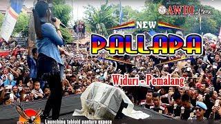 New Pallapa terbaru 2018 FULL LIve Widuri Pemalang width=
