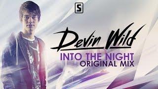 Devin Wild - Into The Night