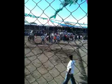 Fiesta Patronal Nagarote. Mujer montando toro (2). 25 de Ju