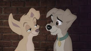 Lady and the Tramp 2 - I Didn't Know That I Could Feel This Way (HD)
